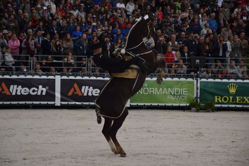JEM 2014 Cross au Haras 194