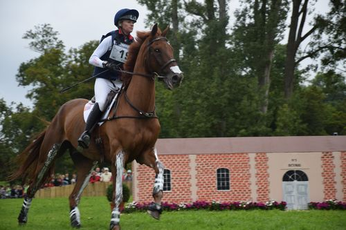 JEM 2014 Cross au Haras 030