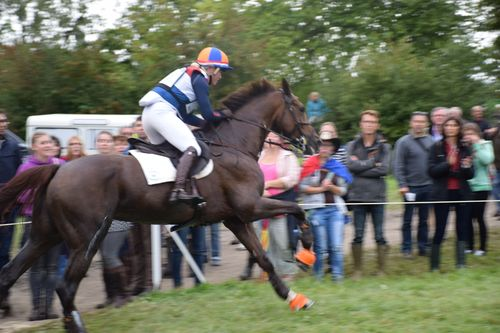 JEM 2014 Cross au Haras 073